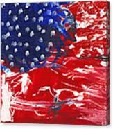 Land Of Liberty Canvas Print