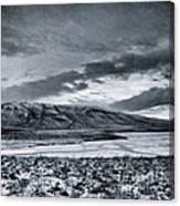Land Shapes 12 Canvas Print