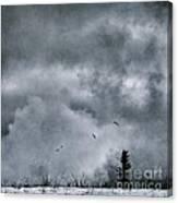 Land Shapes 5 Canvas Print