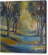 Lands End 04 Canvas Print