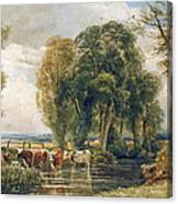 Landscape Cattle In A Stream With Sluice Gate Canvas Print