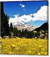 Landscape Of Canada 2 Canvas Print