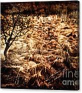Landscape Of Life Canvas Print