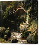 Landscape - Solitude Canvas Print