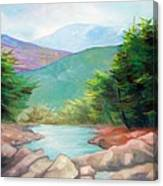 Landscape With A Creek Canvas Print
