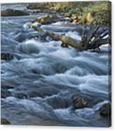 Lanesboro Dam 10 Canvas Print