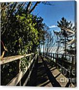 Langmoor-lister Bridge Canvas Print