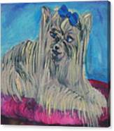 Lap Of Luxury Canvas Print