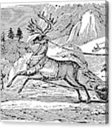 Laplander, C1785 Canvas Print
