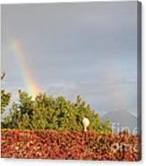 L'arcobaleno Canvas Print