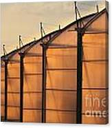 Large Scale Industrial Greenhouse Lit By Sunet Canvas Print