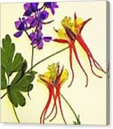 Larkspur And Columbine Canvas Print