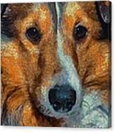Lassie - Rough Collie Canvas Print