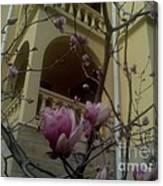Last Artefact Sochi Spring Canvas Print