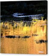 Last Light Near Telluride Canvas Print