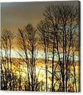 Last Rays Of Light Canvas Print