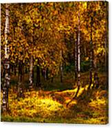 Last Song Of The Autumn 1 Canvas Print