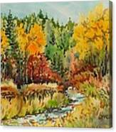 Latah Creek Fall Colors Canvas Print