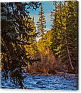 Late Afternoon Along The South Platte Canvas Print