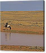 Late Afternoon At The Water Hole - 20x90 Canvas Print