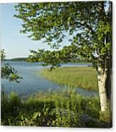 Late Afternoon On Worden Pond Canvas Print