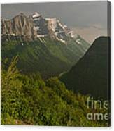 Late Afternoon Sun On The Garden Wall Canvas Print