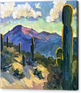 Late Afternoon Tucson Canvas Print