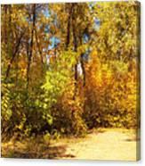 Late Autumn Colours Canvas Print