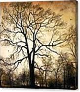 Late Autumn Canvas Print