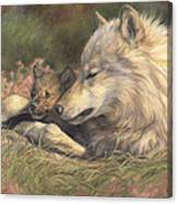 Late Spring Canvas Print