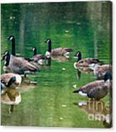 Late Summer Gathering Canvas Print
