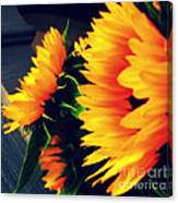 Late Summer Greetings Canvas Print