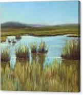 Late Sun On The Marsh Canvas Print