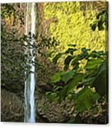 Latourell Falls I Canvas Print