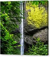 Latourelle Falls Canvas Print