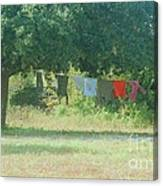 Laundry Hanging From The Tree Canvas Print