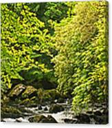 Lauragh River West Cork Canvas Print