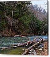 Laurel Hill Creek Canvas Print