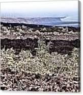 Lava Landscaped Canvas Print