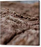 Lava Rock Landscape II Canvas Print