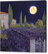 Lavanda Di Notte Canvas Print