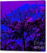 Lavenda Amor Canvas Print