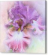 Lavendar Dreams Canvas Print