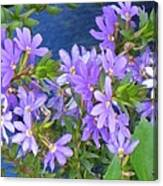 Lavendar Melody Canvas Print