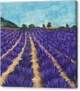 Lavender Afternoon Canvas Print