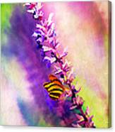 Lavender And Butterlies Canvas Print