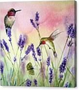 Lavender And Hummingbirds Canvas Print