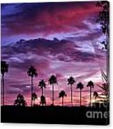 Lavender And Pink Canvas Print