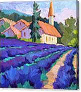 Lavender Field In St. Columne Canvas Print