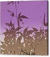 Purple Haiku Canvas Print